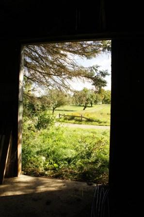 Fall gateway