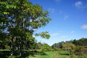 Land Stewardship Center
