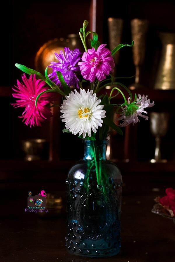Random Flowers Photography