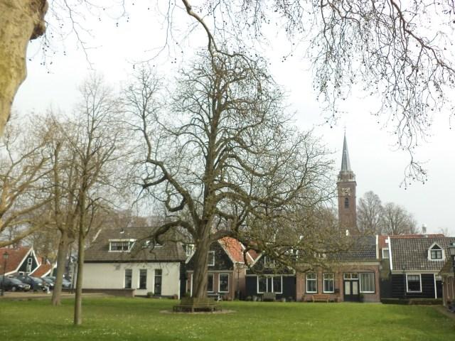 Beemster in Beeld - 't Landje