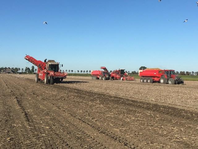 Beemster in Beeld - Aardappels rooien voor en door akkerbouwbedrijf vof Francis met assistentie van loonbedrijf Kramer