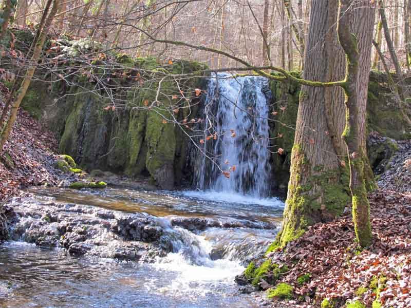 Flüsse und Bäche in schlechtem Zustand