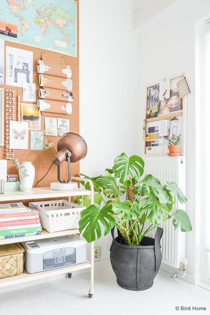 Groen in huis Binti Home Blog ©BintiHome