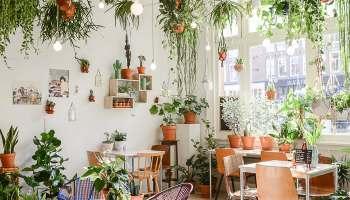 Urban Jungle Inspiratie : Urban jungle bloggers hanging planters at home