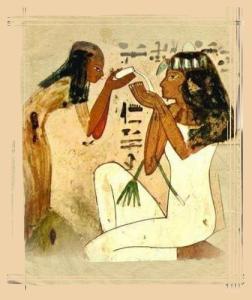 Les vertus santé du romarin egypte