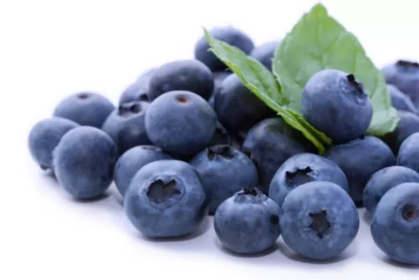 mirtilla_blueberries