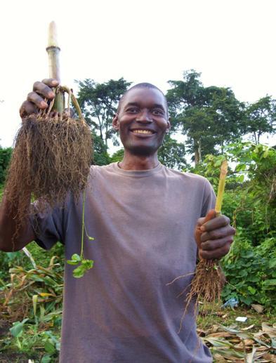 Cameroon   BioEnergy Lists: Biochar Mailing Lists