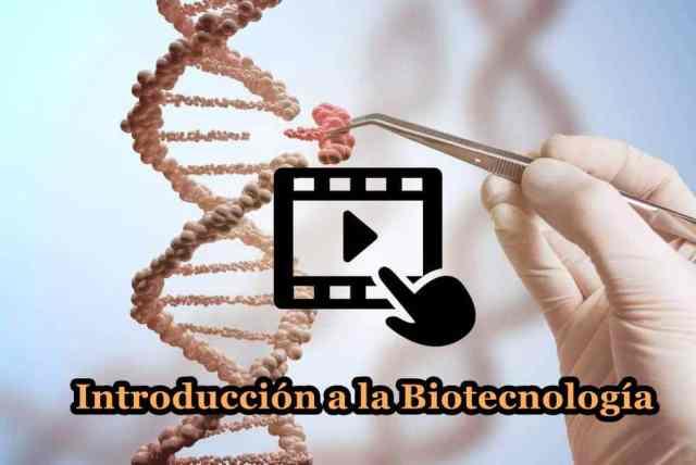 Videoclases sobre Biotecnología