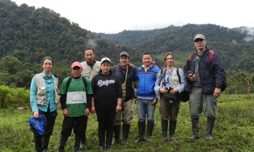 Caracterización Fauna en Plan de Ordenación Forestal Huila