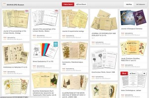 screenshot of World Archive of Science Pinterest page, showing the variety of biodiversity-related topics