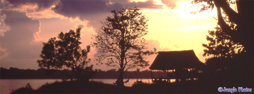 indigenous amazon hut photo silhouette sunset communities