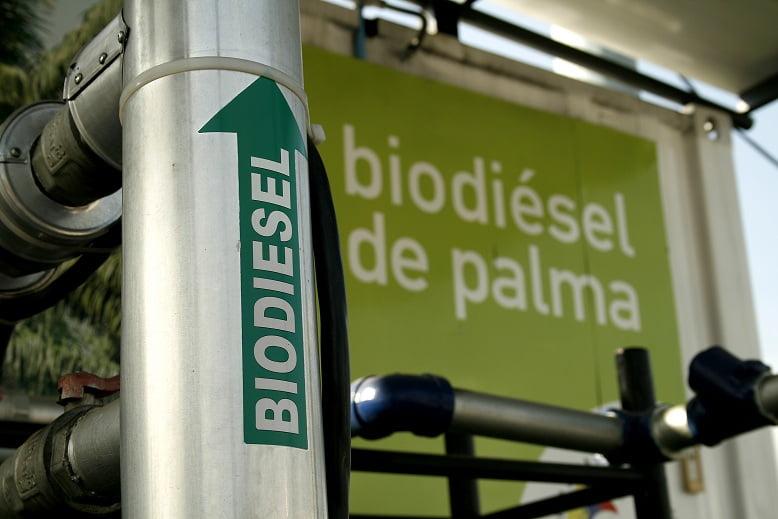 Indonesia propone a México trabajar en conjunto para el desarrollo de biocombustibles a base de palma