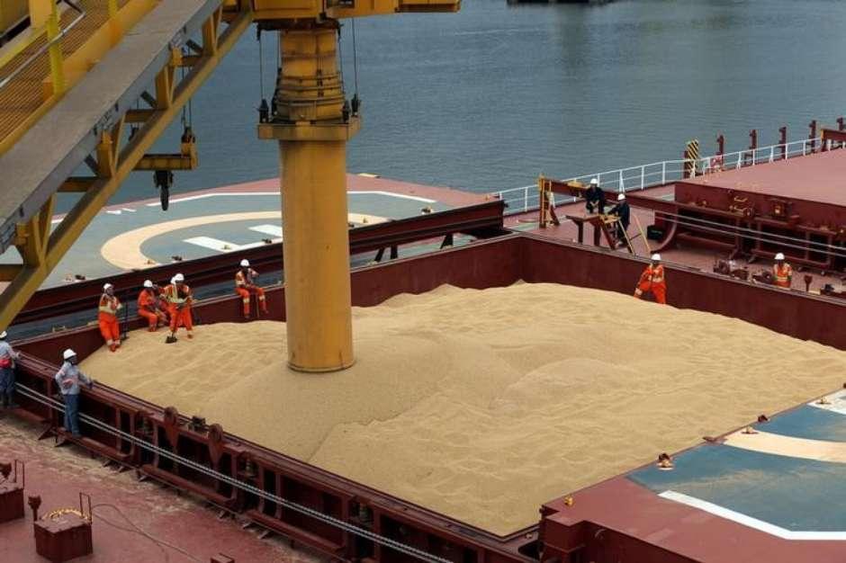 China: Pronostican una fuerte caída en el consumo de harina de soja