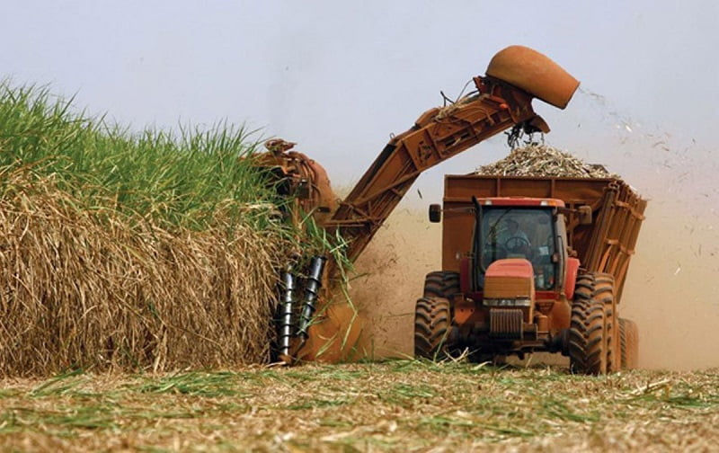 Se aproxima el XXX Congreso Internacional de Técnicos en Caña de Azúcar y se van ultimando los detalles