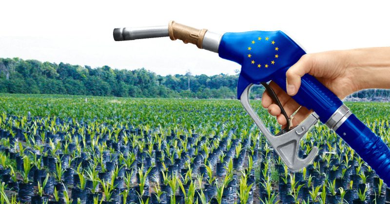 Nuevo informe revela que la bioeconomía europea opera un mercado de 2,4 billones de euros