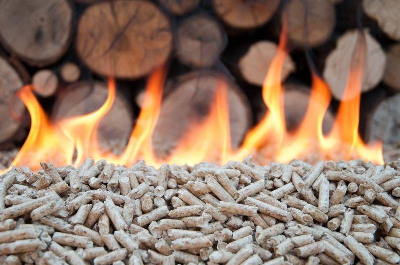 Unidades móviles, el próximo paso para el aprovechamiento de biomasa