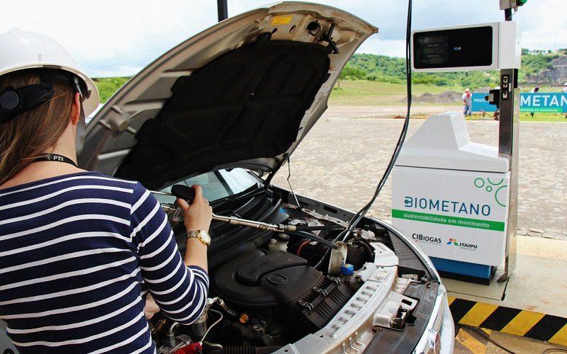 El biogás obtenido de residuos orgánicos podría cubrir el 20% de la demanda mundial de gas