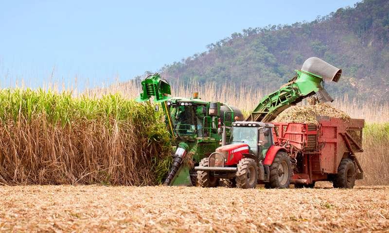 Altos precios de los créditos de carbono disparan las exportaciones de bioetanol brasilero
