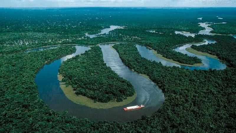 Ministerio de Agricultura de Brasil, Banco de Desarrollo alemán y el IICA lanzan proyecto para fortalecer la innovación y la conservación forestal en la Amazonía