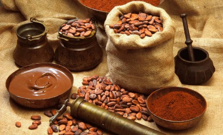 Productores de cacao de Trinidad y Tobago se unen para superar limitaciones y aprovechar casos de éxito