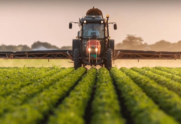 La UE prohibió el uso de un polémico insecticida