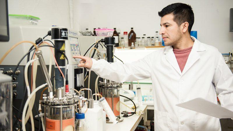 El potencial de las enzimas al servicio de la industria