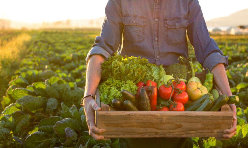 Esocia: llaman a reducir los desperdicios de alimentos y el consumo de carnes y lácteos para combatir el cambio climático