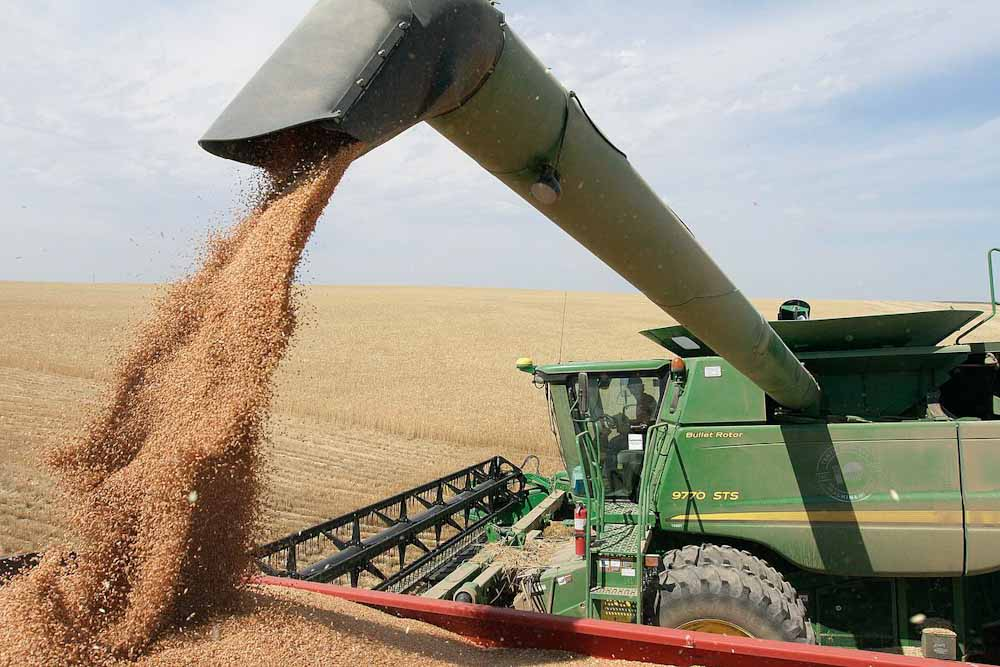 Rumbo a la mayor cosecha global de la historia