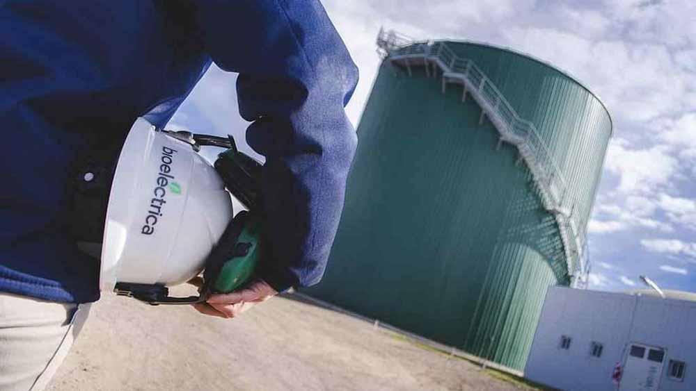 Las bioenergías aportaron más de 3,5 millones de empleos en 2019