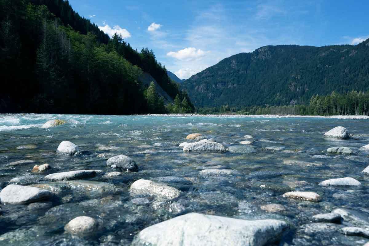 La ONG WWF y Novozymes se asocian para cuidar los recursos hídricos