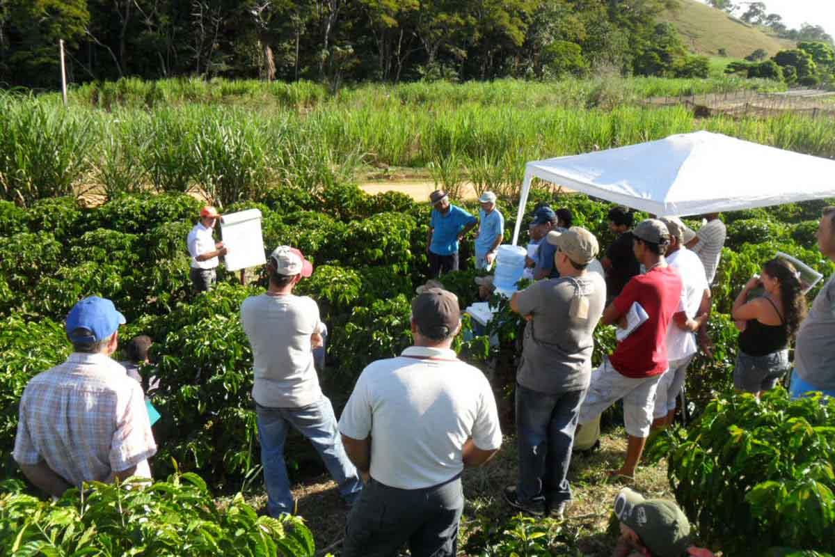 Más sinergias entre agricultura y turismo: la apuesta del Caribe para una recuperación sostenible