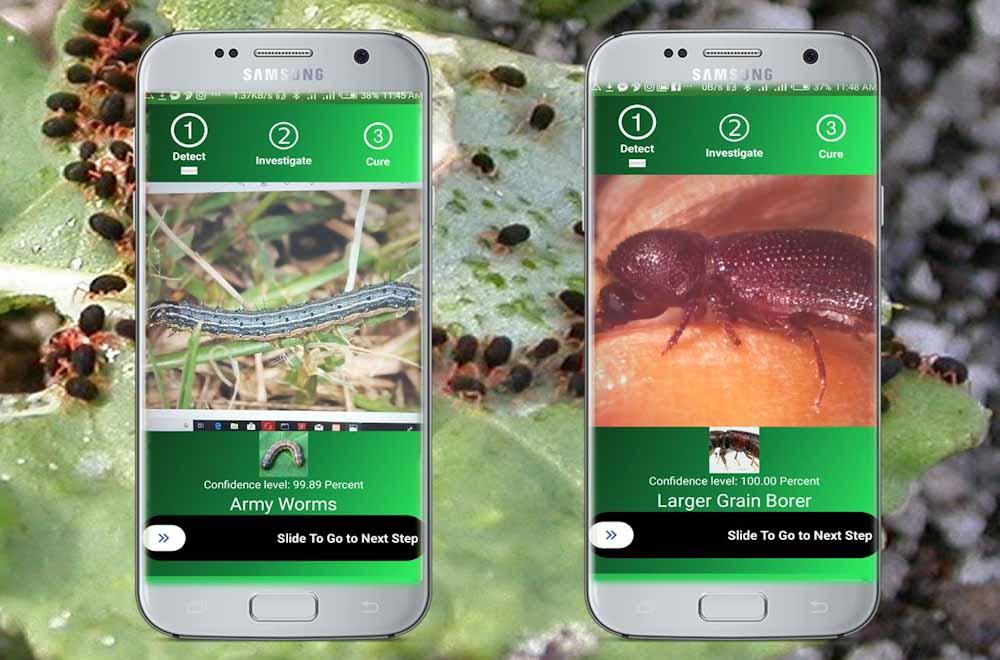 La digitalización y la inteligencia artificial al servicio de la protección de cultivos