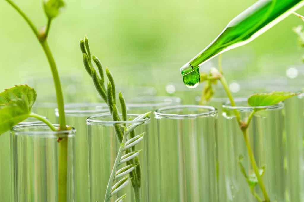EEUU: con fondos del Departamento de Energía, startup avanza con nuevos productos en la química verde
