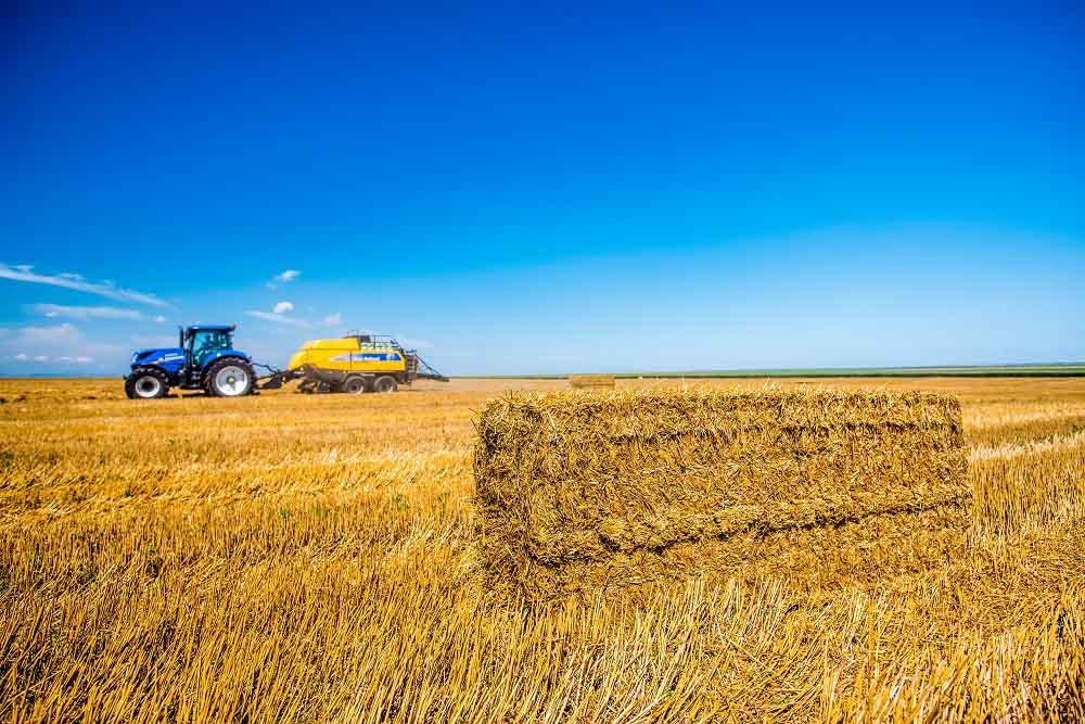 Rumania recibe millonarias inversiones para producir etanol celulósico