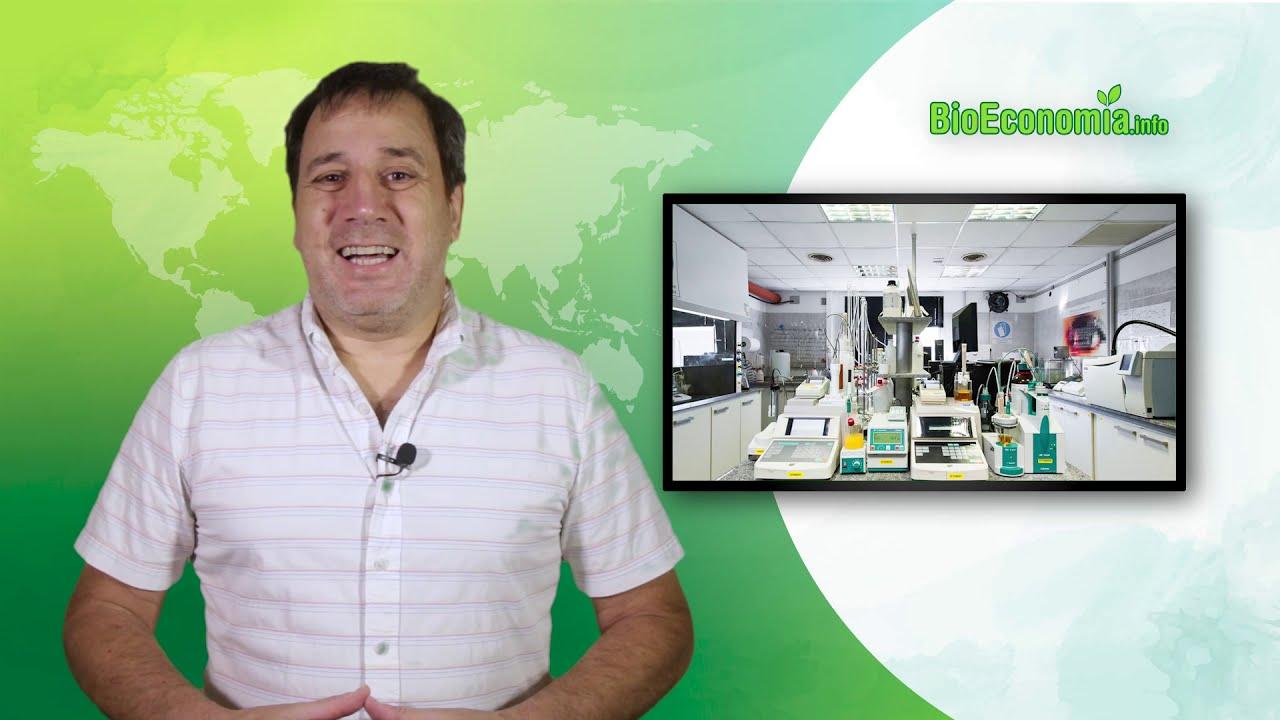 Economía circular y bioeconomía para producir biocombustibles avanzados en Argentina