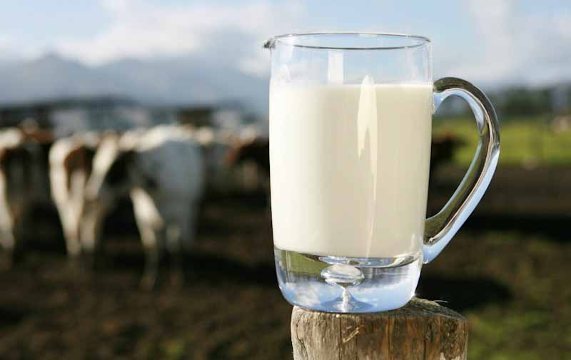 Nestlé consolida su negocio de leche orgánica en Argentina