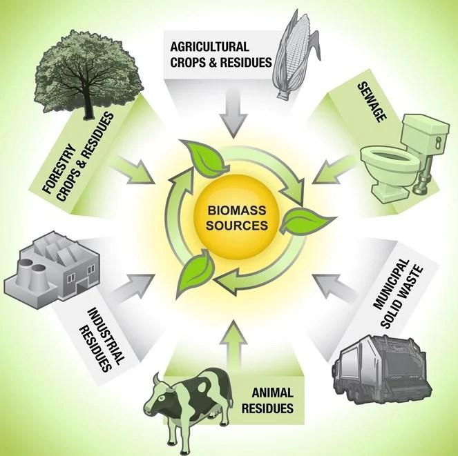 biomass_resources