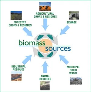 biomass_feedstock