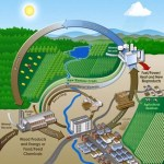 The Concept of Biorefinery