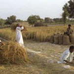 Biomass Energy Potential in Pakistan