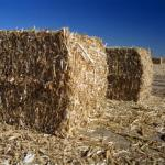 Energy Value of Agricultural Wastes