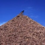 Rationale for Biomass Supply Chain
