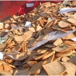 Food Waste Management in UK
