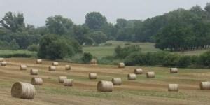 biomass-bales