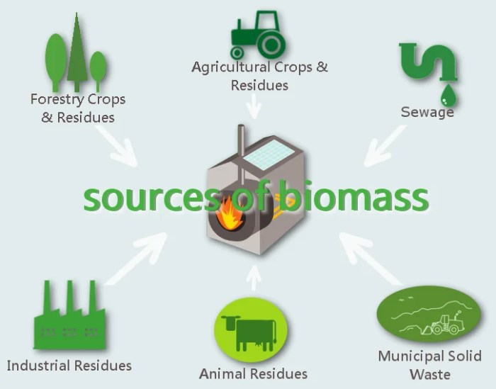 BiomassResources