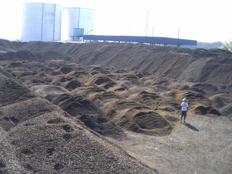 PKS-biomass