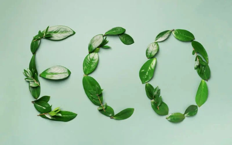 sustainable-habits-for-ecofriendly-home