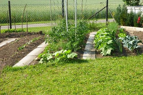 Gardening and Farming the Biodynamic Way