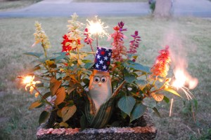 Frank N. Fireworks