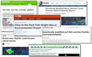 Kettle of GMO Fish
